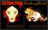 Tiger Conservation Illustrative Ads | Photoshop CS2 | 10.24.2010